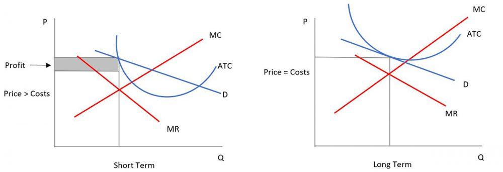 Table 5.1 Short term and long term profit maximisation